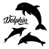 海豚传染媒介剪影  免版税图库摄影