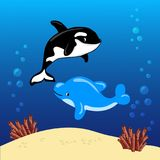 海豚和鲸鱼凶手游泳在水面下与沙子、泡影和珊瑚背景 免版税库存图片