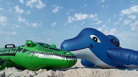 海豚和鳄鱼在海滩 股票录像