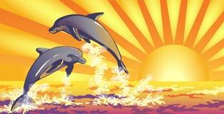 海豚在海运 向量例证