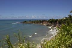 海豚小海湾-新生巴西海滩 图库摄影