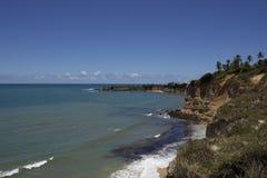 海豚小海湾-新生巴西海滩 免版税库存照片
