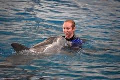 海豚展示在巴尔的摩,马里兰 免版税库存照片