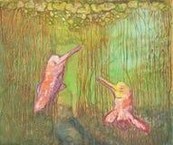 海豚戏剧 库存照片