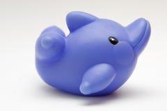 海豚橡胶玩具 库存照片