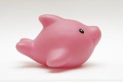 海豚橡胶玩具 库存图片