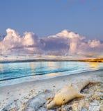 海豚沙子雕象在日落的多云天空下 免版税库存图片