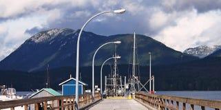 海豚海湾的船坞 免版税图库摄影