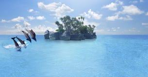 海豚游泳,跳跃在蓝色海洋云彩,海洋野生生物背景 库存图片