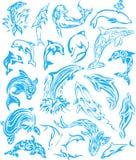 海豚纹身花刺 免版税库存图片