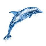 海豚跳的水 图库摄影