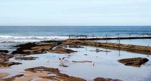 海边岩石水池 库存图片