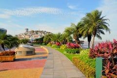 海边有圣安娜小山的Malecon 2000年走道 免版税图库摄影