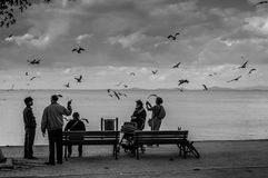 海边的人们在一个小镇 库存图片