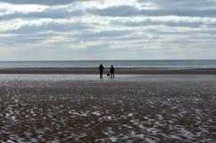 海边的人们在圣蜂 免版税图库摄影