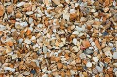 海边背景-在海滩的小卵石 免版税库存图片