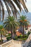 海边从我们的夫人诞生教会的台阶的Prcanj镇看法  海湾kotor montenegro 库存图片