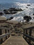 海运楼梯 免版税图库摄影