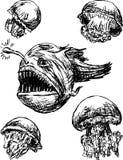 海运生物 免版税库存图片
