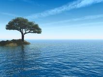海运结构树 库存照片