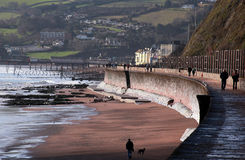海运teignmouth墙壁 免版税图库摄影