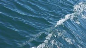 海远航 影视素材