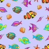 海里的无缝的样式 免版税库存照片