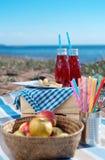 海野餐 库存图片
