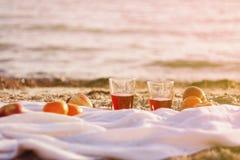 海野餐 免版税图库摄影
