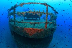 海难和鱼 免版税图库摄影