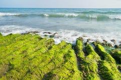 海风景与渗流岸上 免版税图库摄影