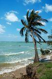 海风3 库存图片