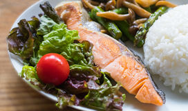 海鱼油煎了,白米,油煎的菜和菜沙拉 免版税库存照片