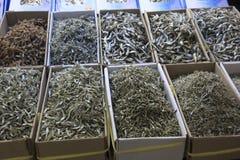 海鲜品种在鱼市,釜山, S上 韩国 库存照片