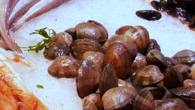 海鲜在冰La Boqueria的市场上在巴塞罗那,西班牙接近  海鲜捉蟹龙虾乌贼虾小龙虾牡蛎 股票视频