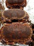 海鲜在超级市场 图库摄影