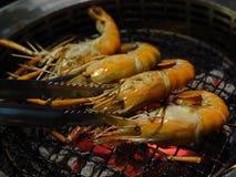海鲜巨型淡水大虾虾在热的木炭烤了 免版税库存照片