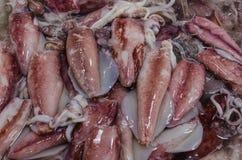 海鲜市场â新鲜的乌贼 库存图片