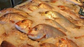 海鲜市场 免版税库存照片