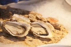 海鲜开放牡蛎的蛤蜊 库存照片