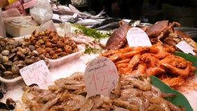 海鲜捉蟹龙虾乌贼虾小龙虾牡蛎在鱼市La Boqueria西班牙的淡菜贝壳 股票录像