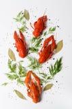 海鲜盘,红色煮沸了小龙虾反对白色背景,顶视图照片 种类啤酒的快餐 免版税图库摄影