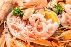 海鲜盛肉盘壳 免版税库存照片