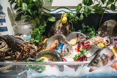 海鲜盛肉盘 库存图片
