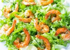 海鲜虾在白色板材的莴苣沙拉 免版税库存图片