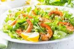 海鲜虾在白色板材的莴苣沙拉 免版税库存照片