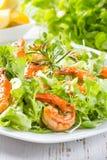海鲜虾在白色板材的莴苣沙拉 库存照片