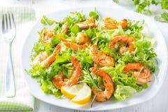 海鲜虾在白色板材的莴苣沙拉 库存图片