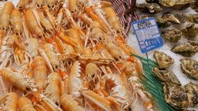 海鲜虾小龙虾在逆市场,在市场La Boqueria的海鲜上捉蟹在看法的巴塞罗那关闭 股票视频