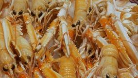 海鲜虾小龙虾在逆市场,在市场La Boqueria的海鲜上捉蟹在看法的巴塞罗那关闭 影视素材